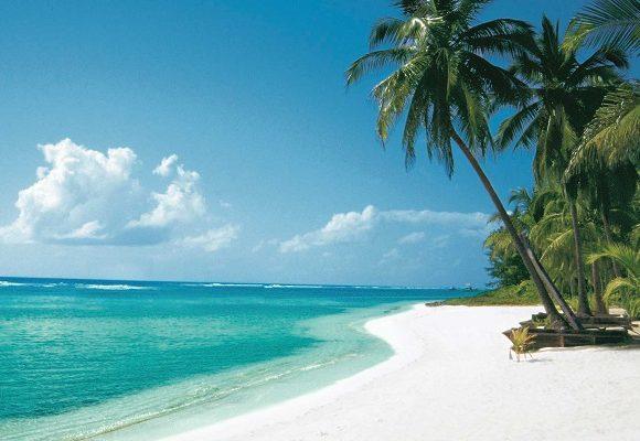 Destination paradisiaque aux Îles Caïmans