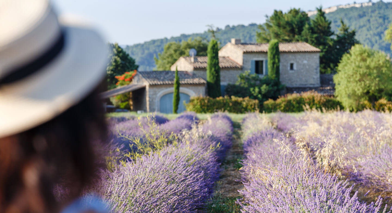 Vacances à la campagne : les meilleurs coins France